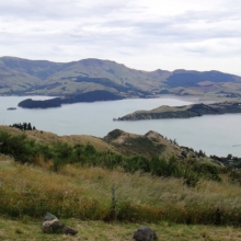 View from the Port Hills