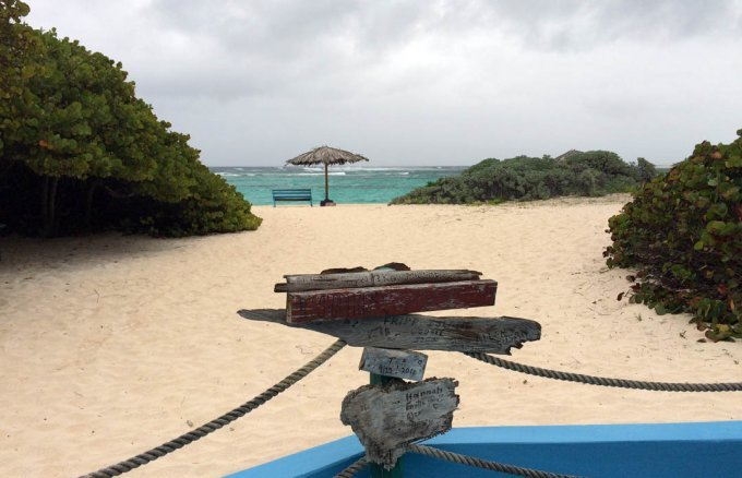 View from bar to Loblolly Bay