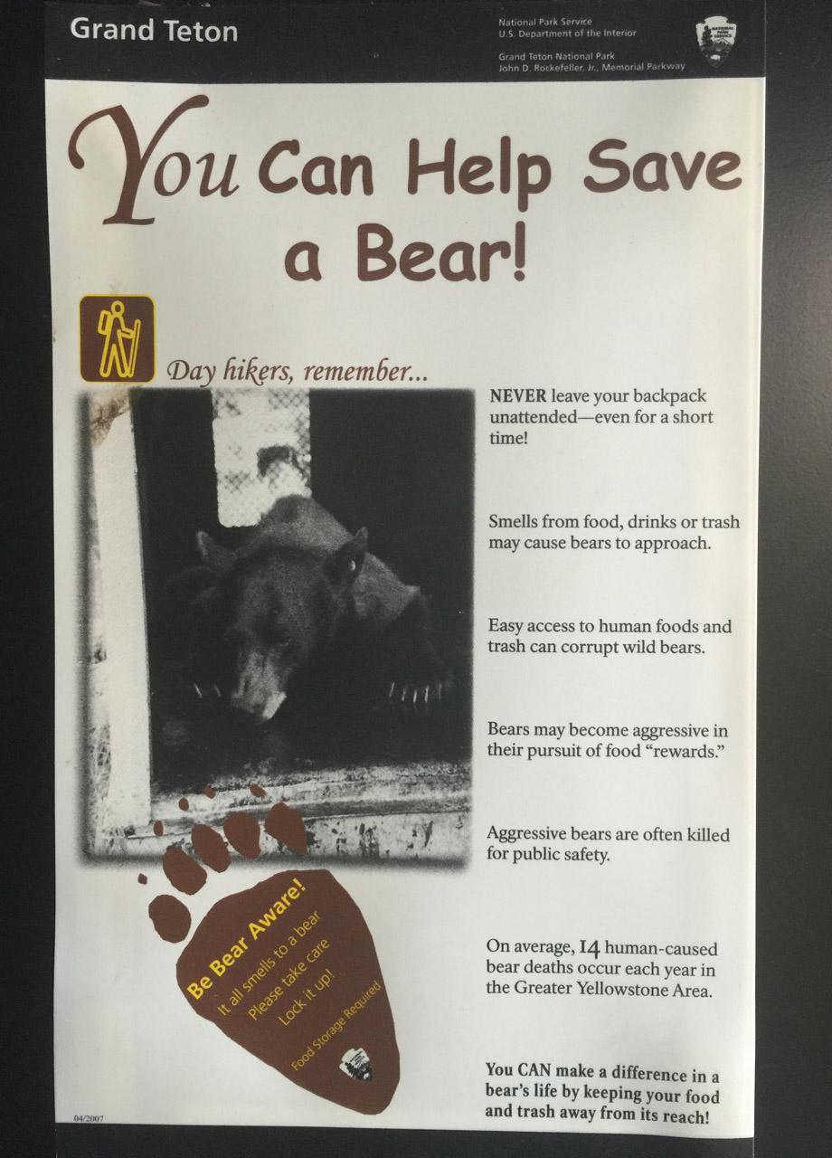 Bear SIgn 2