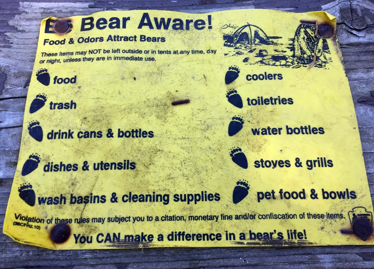 Bear Sign 3