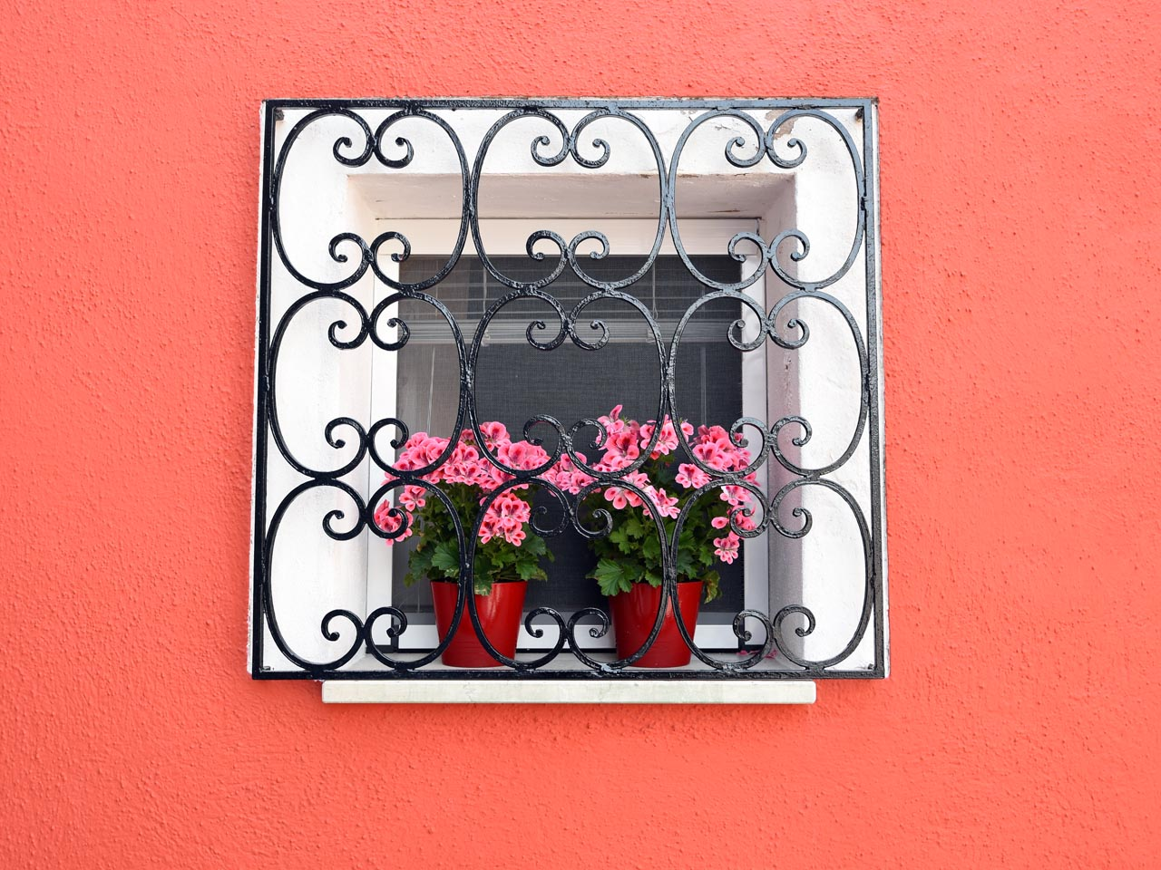 Lovely window box in Burano