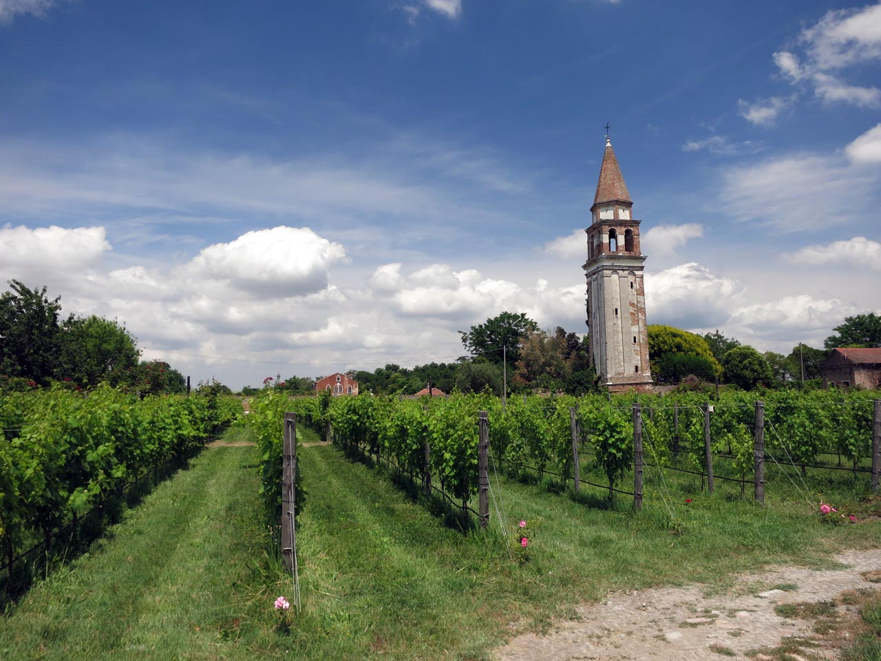Winery in Mazzorbo