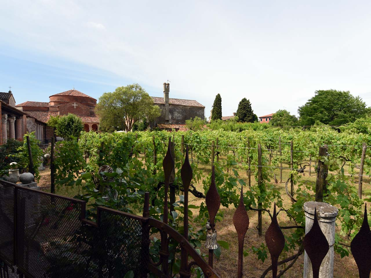 Winery on Torcello
